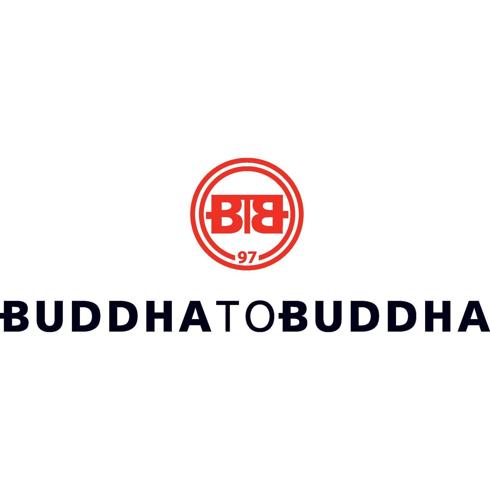 BUDDHA TO BUDDHA (Afbeelding 1)