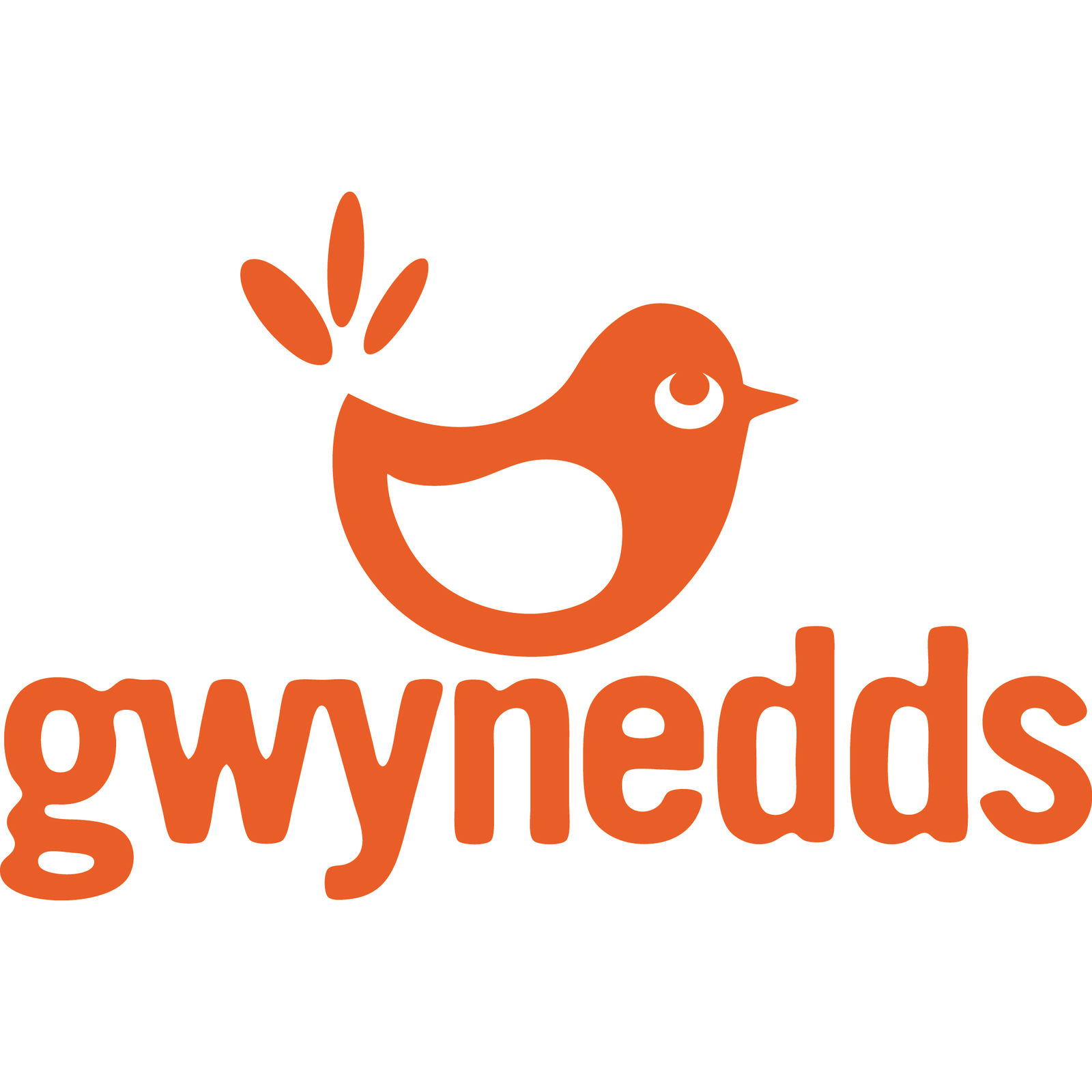 Gwynedds in Dusseldorf (Image 1)